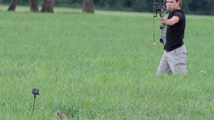 Bowhunting groundhogs